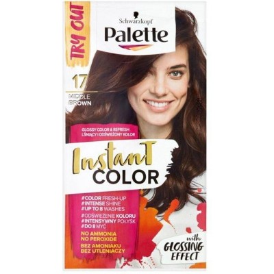 Schwarzkopf Palette Instant Color barva na vlasy - 17