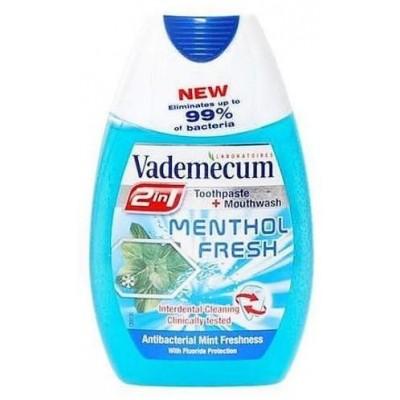 Vademecum 2in1 Menthol Fresh zubní pasta a ústní voda 75 ml