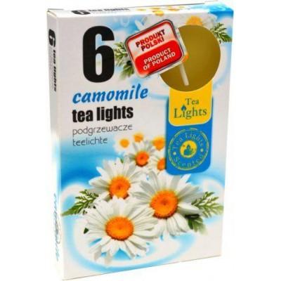 Tea Lights Camomile čajové svíčky 6 ks