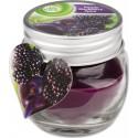 Air Wick Essential Oils svíčka - Lesní plody 30 g