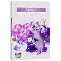 Bispol Aura čajové svíčky - Violet 6 ks